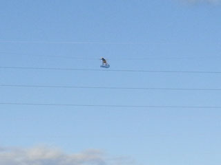 Flying04