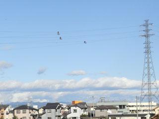 Flying06