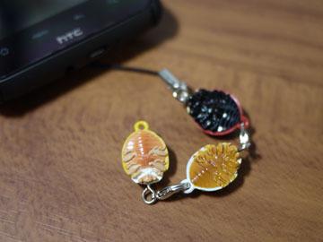 Ladybug04