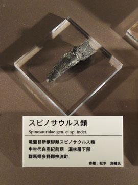Shizenshi05
