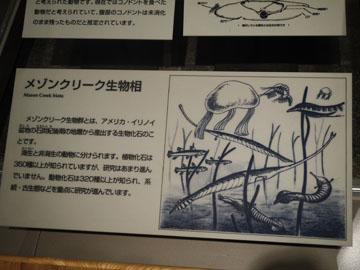 Shizenshi06