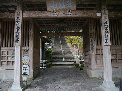Kouchi50