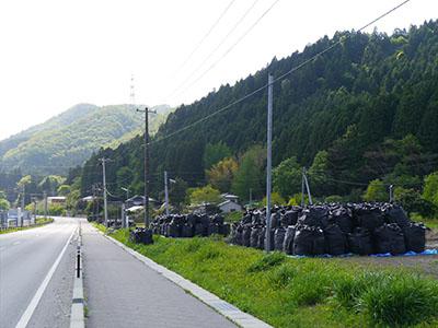 Fukushima40