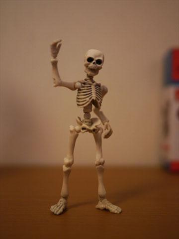 Skeleton01_2