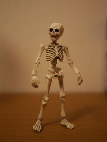 Skeleton03_2