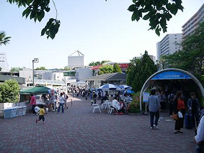 Shinasui01