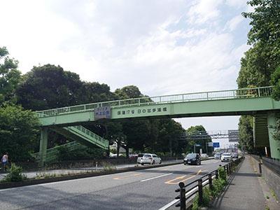 Saitamasuijo11