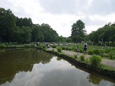Ageomaruyama02