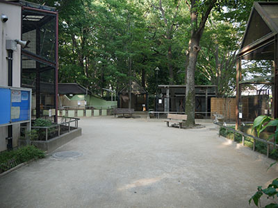 Ageomaruyama10