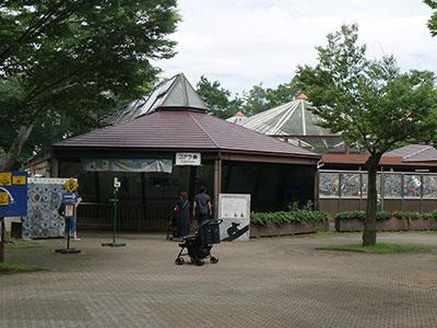 Higasimatsuzoo06