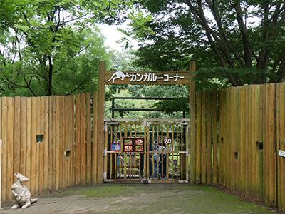 Higasimatsuzoo11