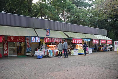 Hikawa13