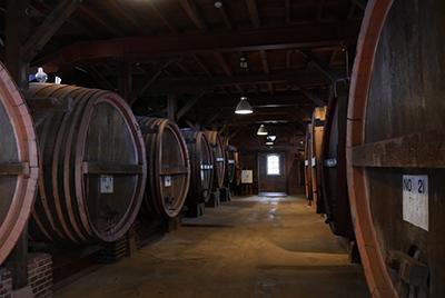 U_winery05